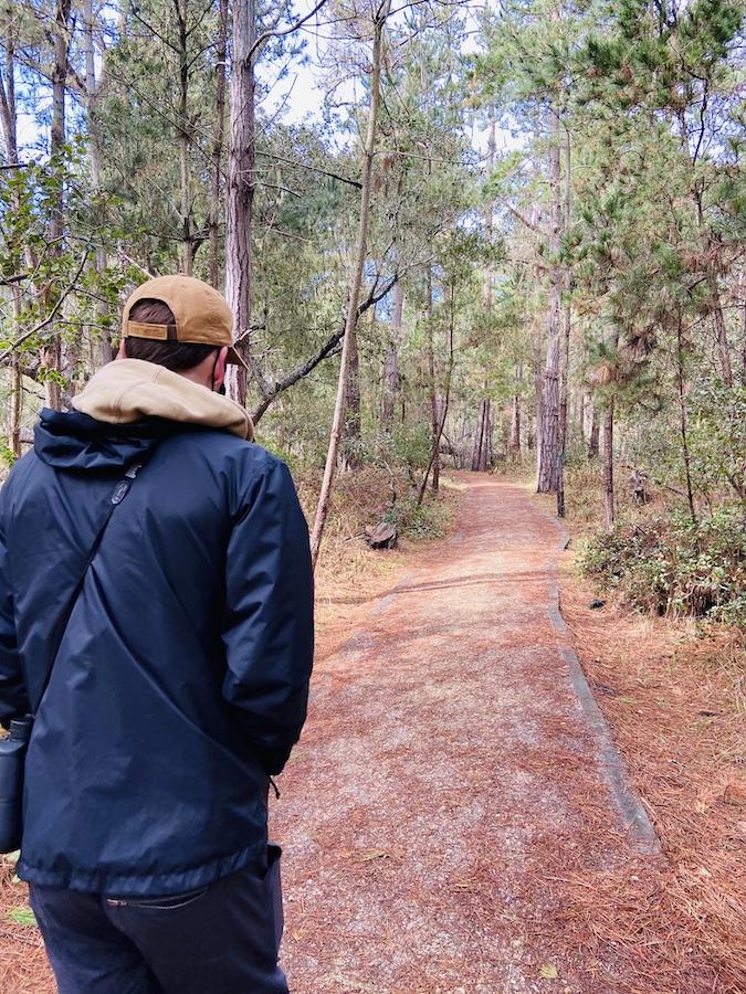 Hiking Point Lobos trails
