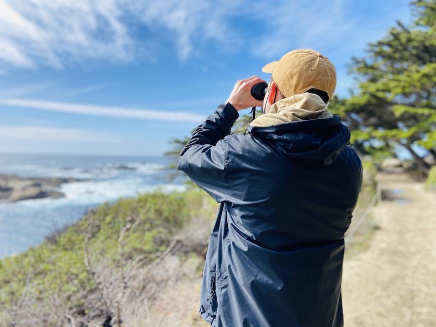 Looking at seals through binoculars