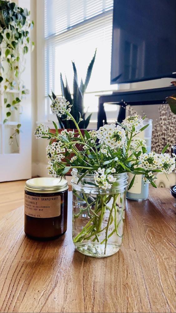 Fresh cut alyssum in mason jar