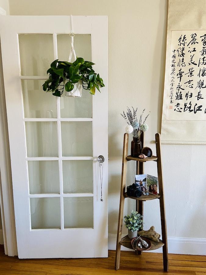 Hanging pothos plant on door