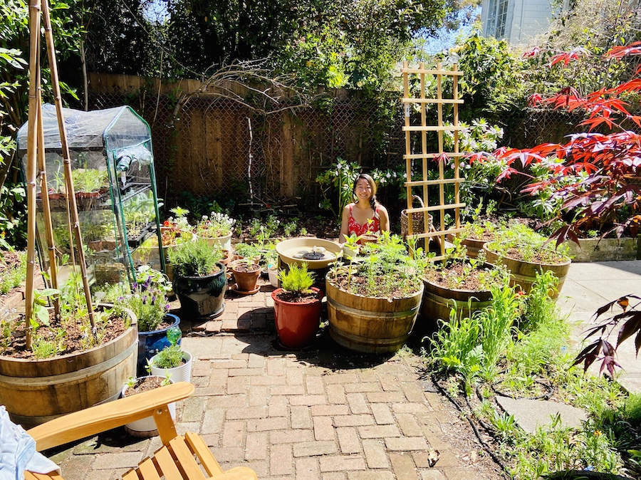 SF backyard garden with wine barrels