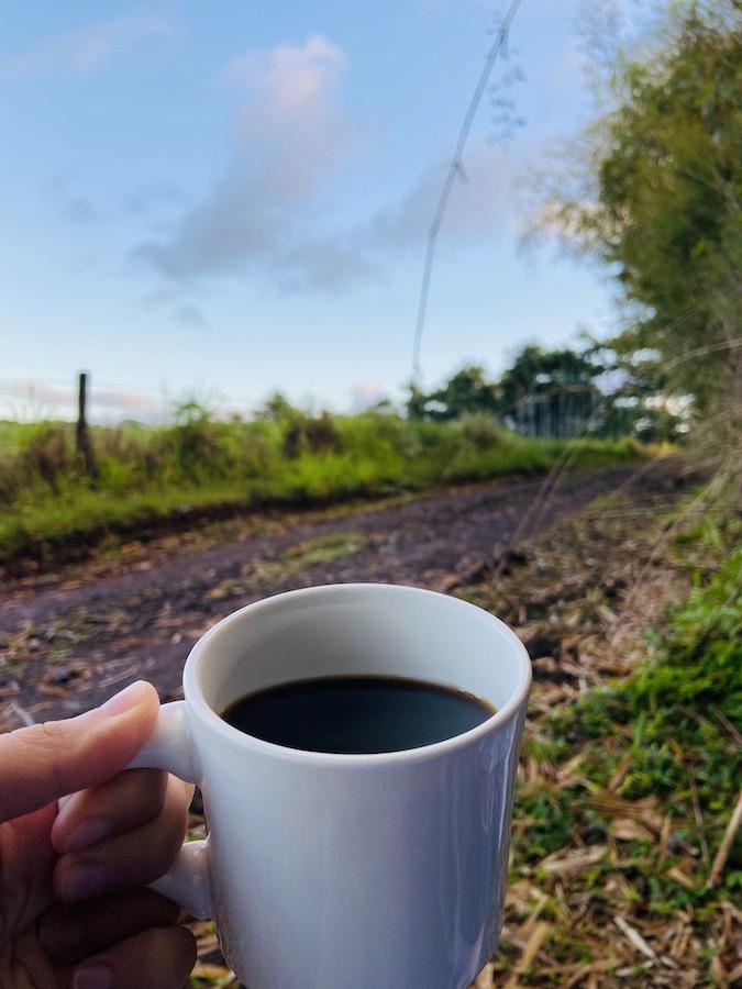 Morning coffee on remote farm