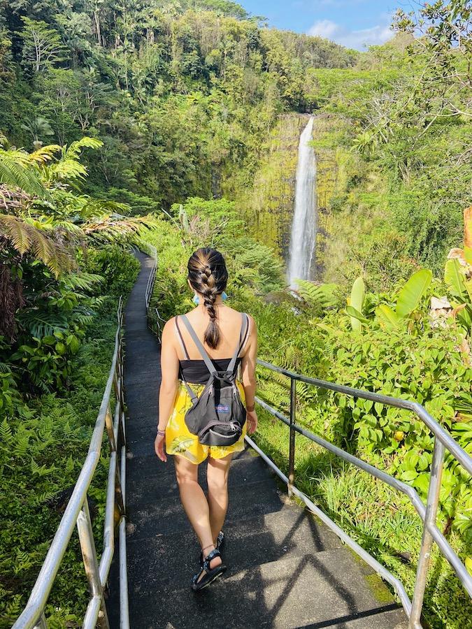 Akaka Waterfall State Park trail