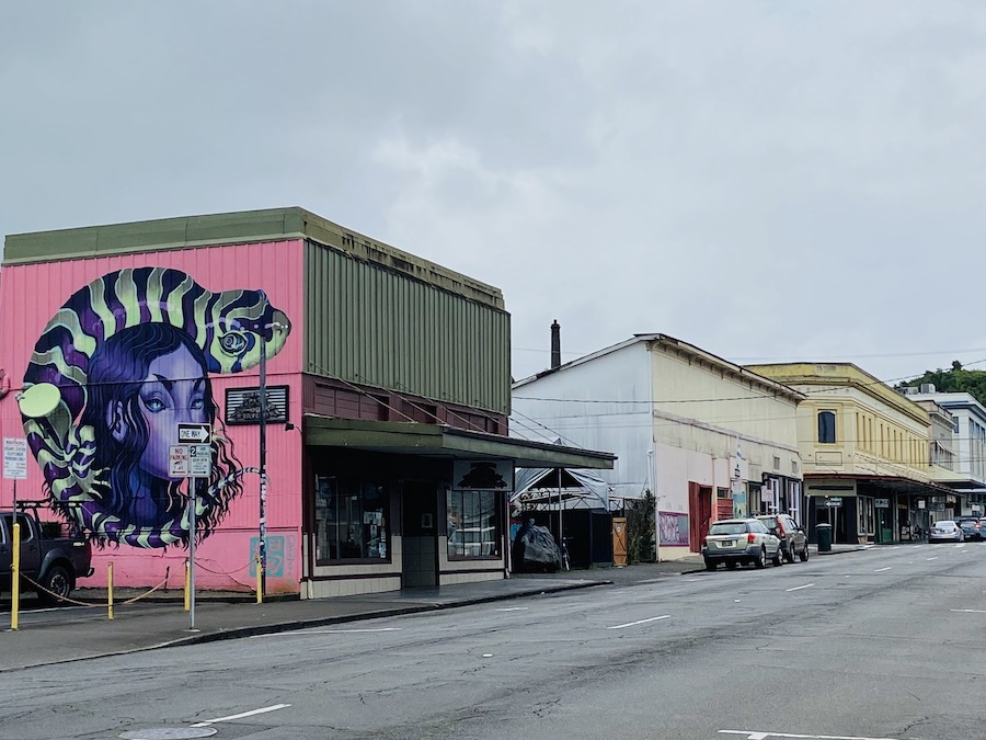 Downtown Hilo on cloudy day