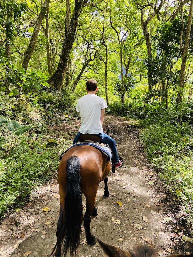 Horse back riding in Waipi'o Valley