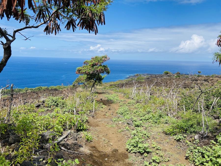Captain Cook trail coastal views